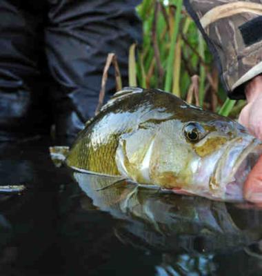 Fishing Zealand – Lolland-Falster